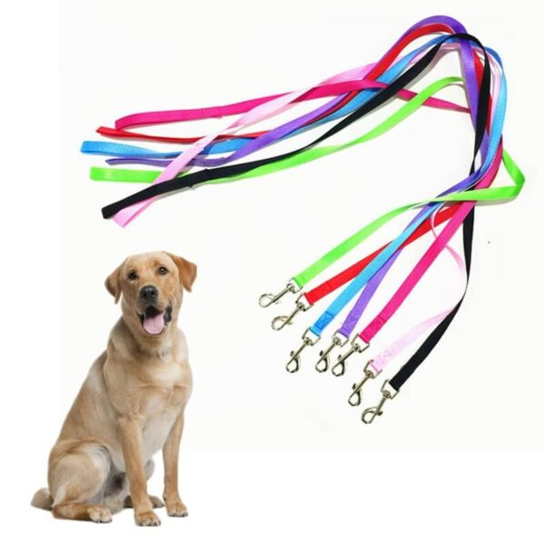 Buy-Puppy-Dog-Leash-Nylon-Pet-Strap-Rope-Small-Dogs-Kenya-Nairobi-Spawtive