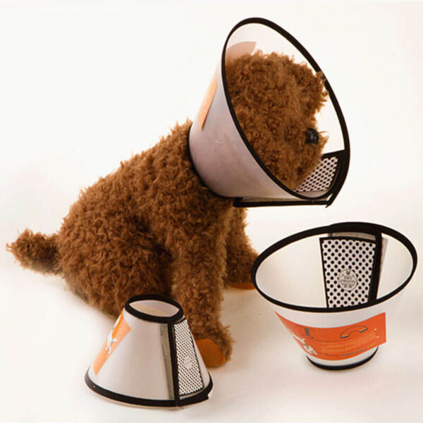 Buy Recovery Cone Collar for dog or cat in Kenya on spawtive veterinary