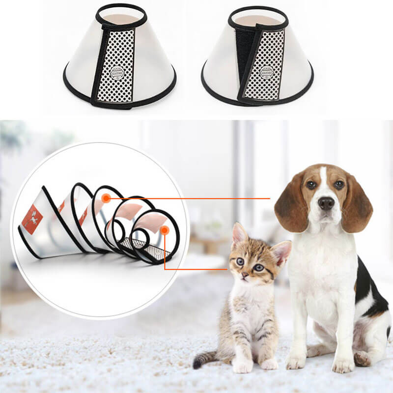 Buy Recovery Cone Collar for dog or cat in Kenya on spawtive.co.ke buy online