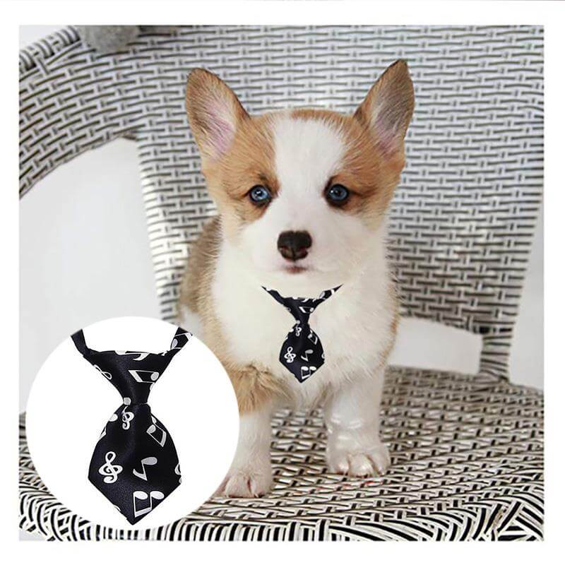 Adjustable-Dog-Cat-Pet-Tie-Puppy-Toy-Grooming-Bow-Tie-Necktie-Clothes-in-Nairobi-Spawtive.co.ke-Kenay-Pets