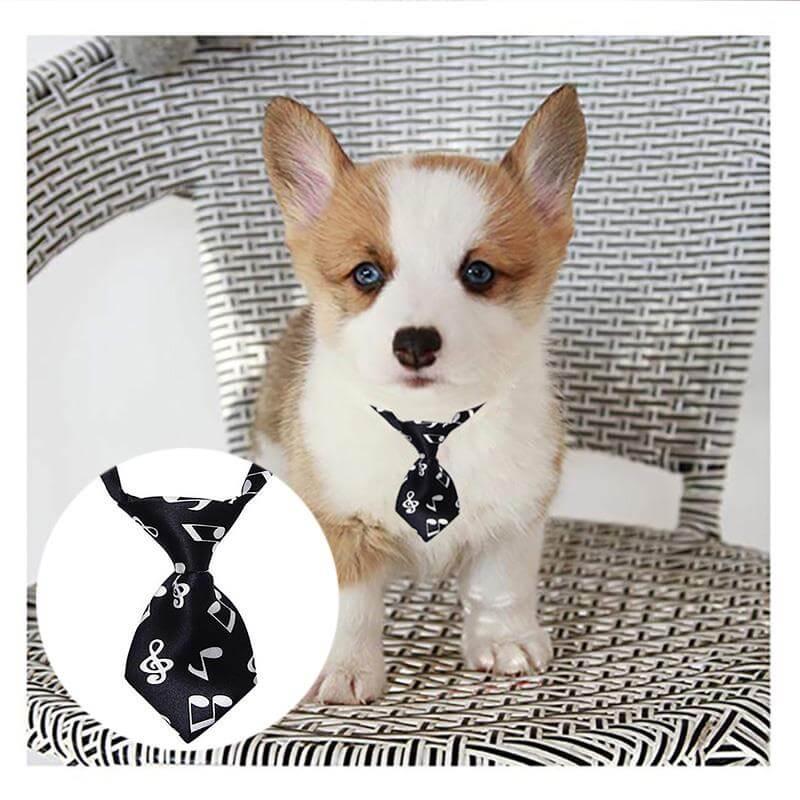 Adjustable-Dog-Cat-Pet-Tie-Puppy-Toy-Grooming-Bow-Tie-Necktie-Clothes-in-Nairobi-Spawtive.co.ke-Kenay-Pets