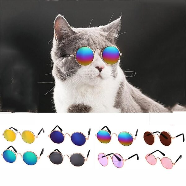 Buy-Pet-Cat-Dog-Sunglasses-For-Cats-Dogs-Eye-Wear-Snglasses-In-Kenya