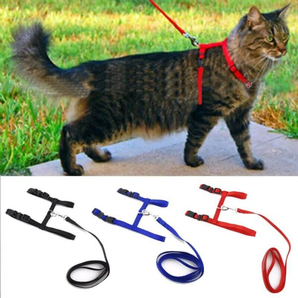 Cat-Harness-Leash-Adjustable-Pet-Traction-Cat-Kitten-Halter-Collar-in-kenya-on-spawtive.co.ke-