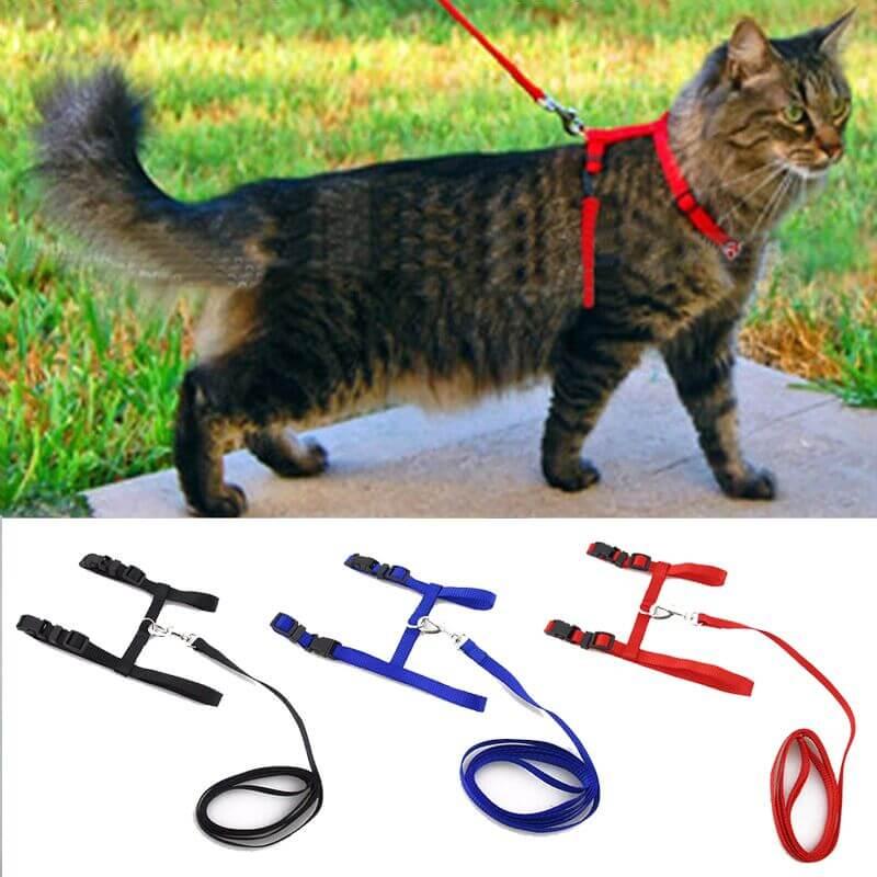 Cat-Harness-Leash-Adjustable-Pet-Traction-Cat-Kitten-Halter-Collar-in-kenya-on-spawtive.co.ke-