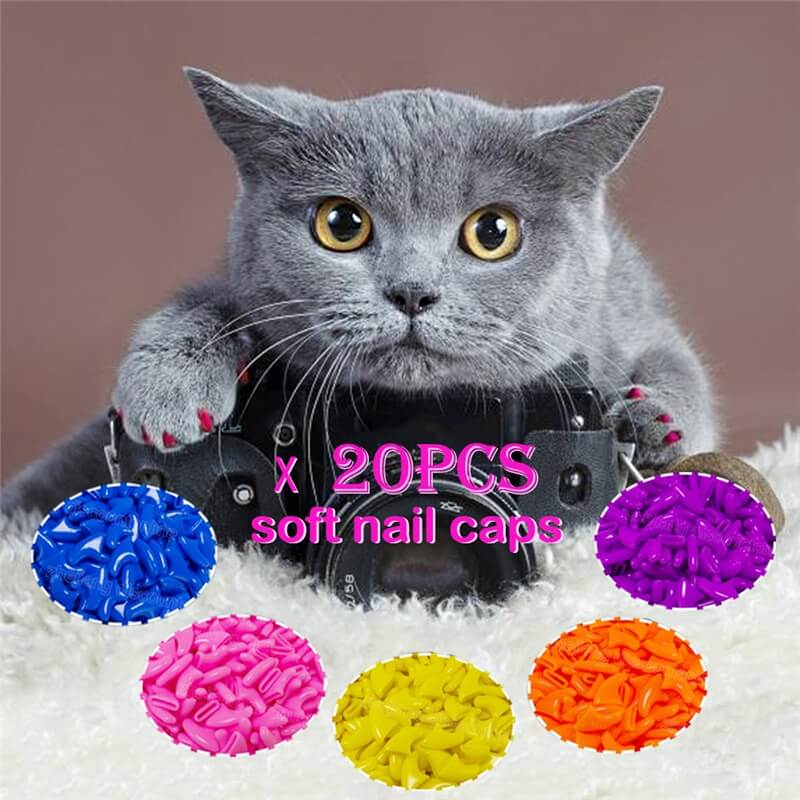 Choose different sizes of Anti-scratch Nail Caps for Dogs and Cats