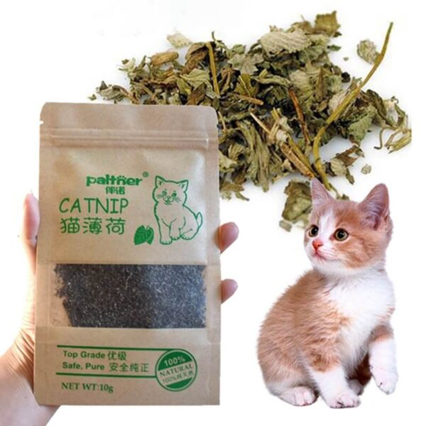 Natural-Premium-Catnip-For-Cat-Cattle-Grass-10g-Menthol-Flavor-In-Nairobi-Kenya-On-Spawtive