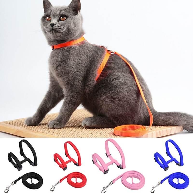 Pet-Cat-Harness-Leash-Adjustable-Cat-Harness-Breakaway-Nylon-Strap-Collar-with-Leash-Leads-for-cat-Kitten-in-kenya-spawtive.co.ke-