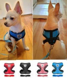Best Small & Medium Breed Dog Harness +Free Leash in Kenya