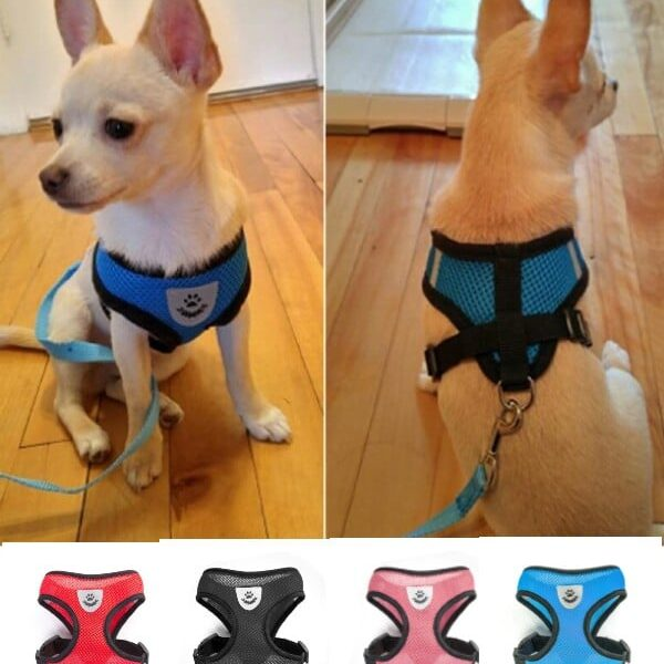 Best Small & Medium Breed Dog Harness +Free Leash in Kenya