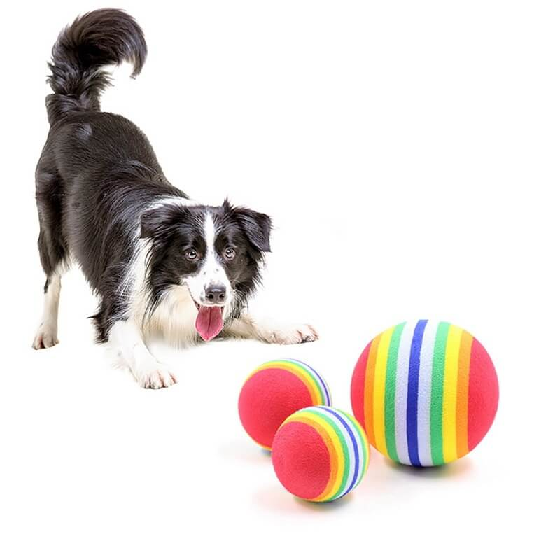 Rainbow Rubber Ball Toy for Dogs and Cats in Kenya