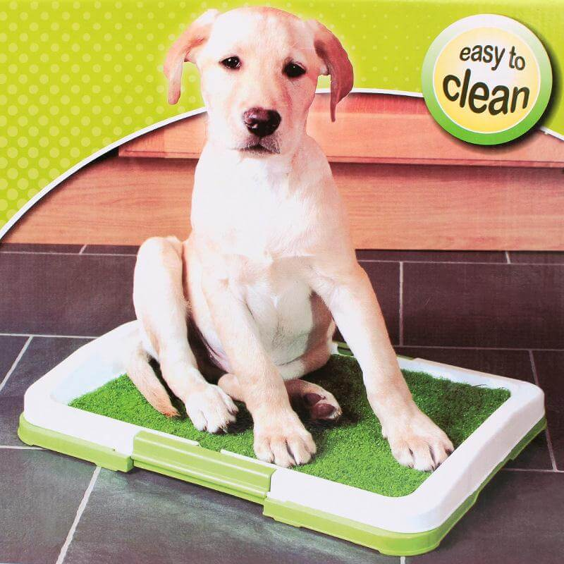 Buy 3 Layers' Dog Potty Pad Trainer in Kenya