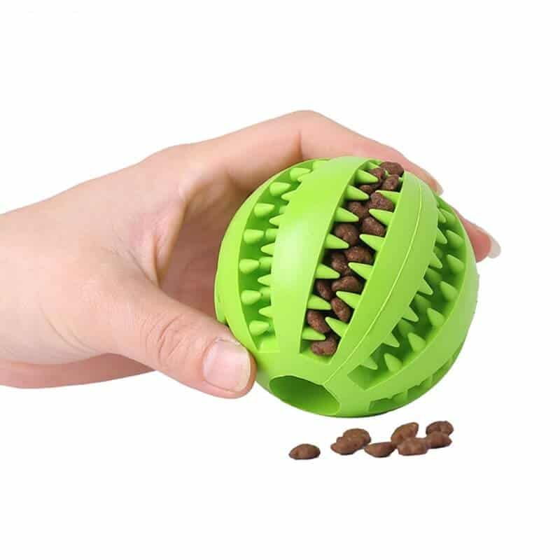 Interactive Chew Teeth Cleaning Treat Ball Toy for Dog in Kenya