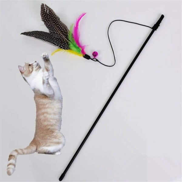 Buy Bird Feather Teaser Wand Cat Toy in kenya