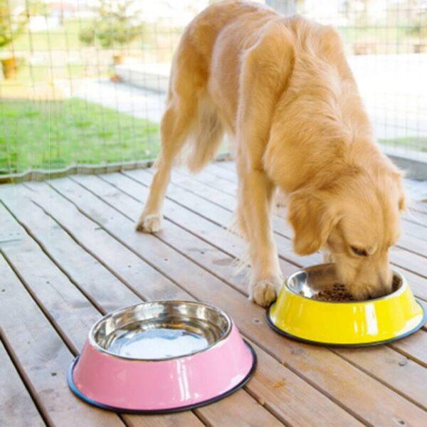 Buy Petsasa Large Dog Food and Water Bowl Plate in Kenya