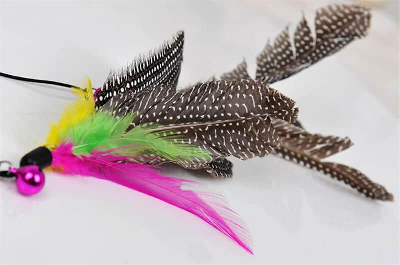 colourful pet toys in kenya Bird Feather Teaser Wand Cat Toy