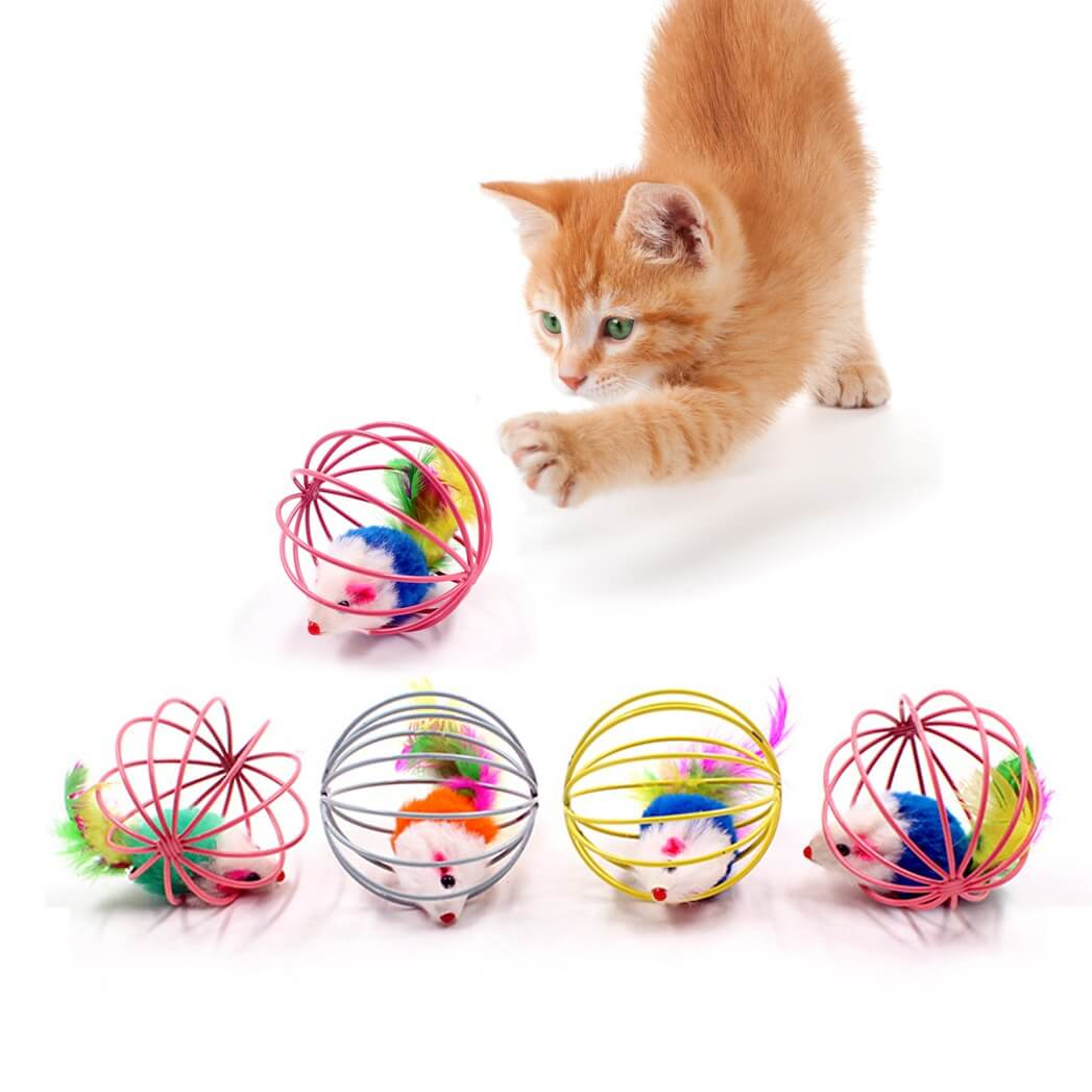 Buy Interactive Feather Cage Cat toy in Kenya on PetSasa