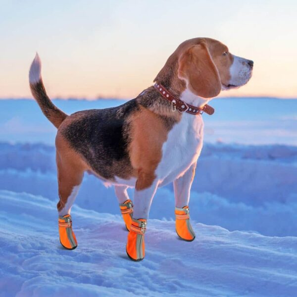 Buy Waterproof Anti-slip Reflective Pet Rain Boots Dog Shoes in Kenya