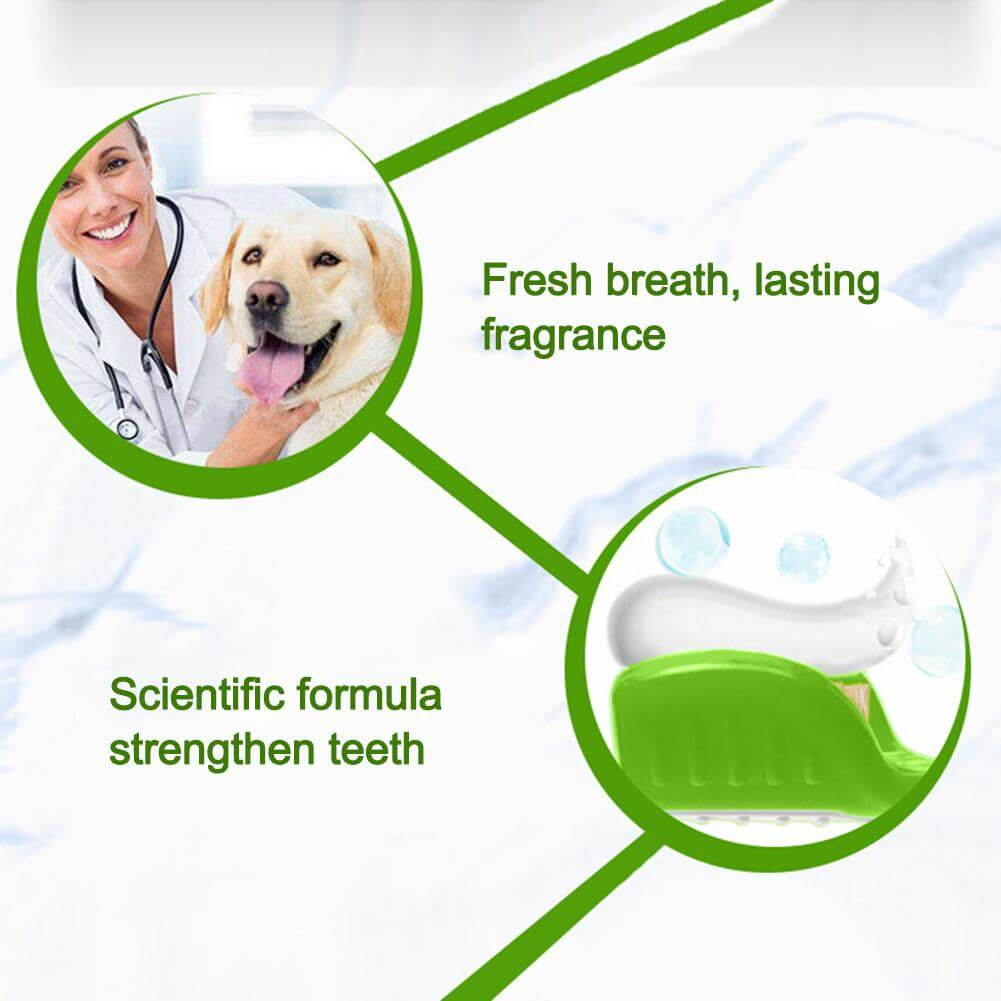 toothpaste for pets in Kenya
