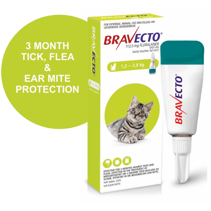 Petsasa Bravecto Spot-On Topical Solution for Small Cats 1.2-2.8 Kgs in Kenya