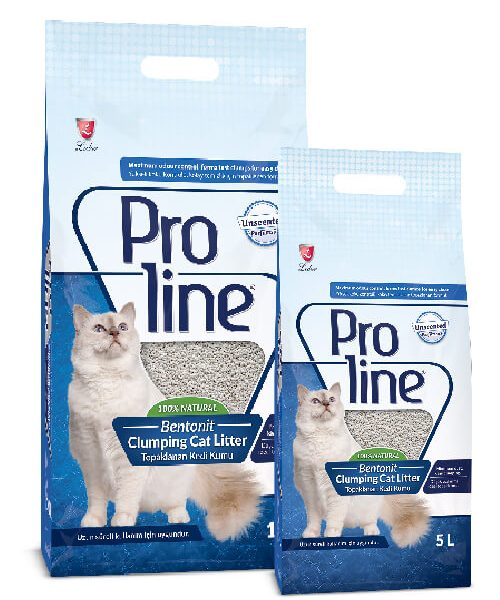 Petsasa Proline Bentonite Unscented Clumping Cat Litter in Kenya