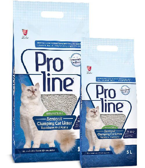 Petsasa Proline Bentonite Unscented Clumping Cat Litter in Kenya