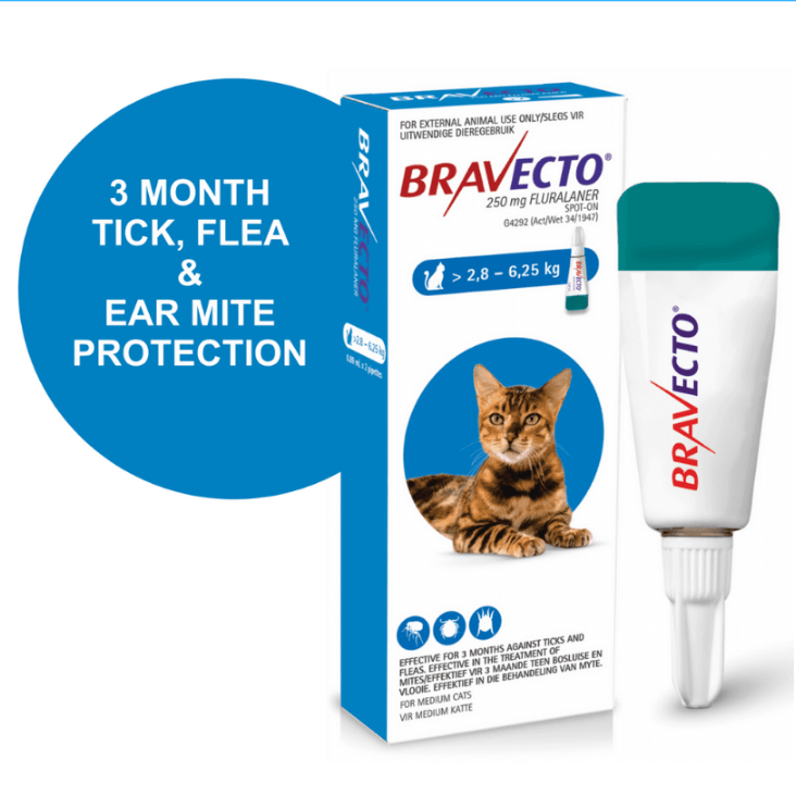 Petsasa-kenya-bravecto-spot-on-tropical-flea-tick-solution-for-medium-cats