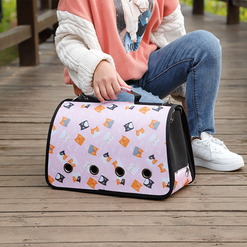Beautiful Cute Breathable Dog and Cat Carrier Bag for Travel in Kenya