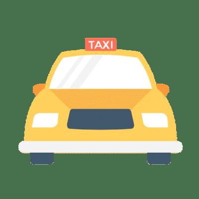 petsasa-pet-transport-and-pet-taxi