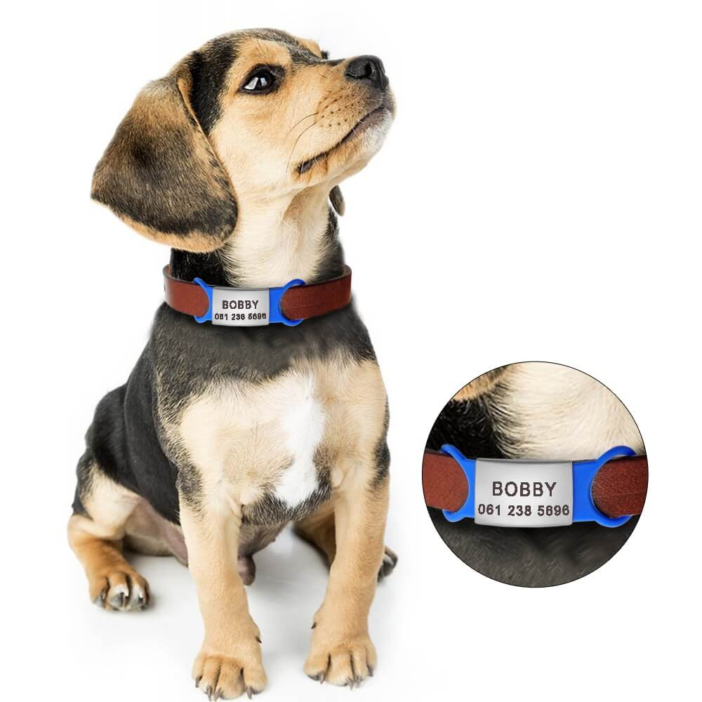 stainless-Steel-Pet-ID-Tags-Personalized-For-Small-Dogs-Cats-Custom-Engraved-Dog-Nameplate-Tags-No