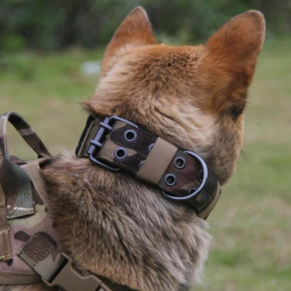 Military Tactical Dog Collar for K9 Big Dog on Petsasa Kenya