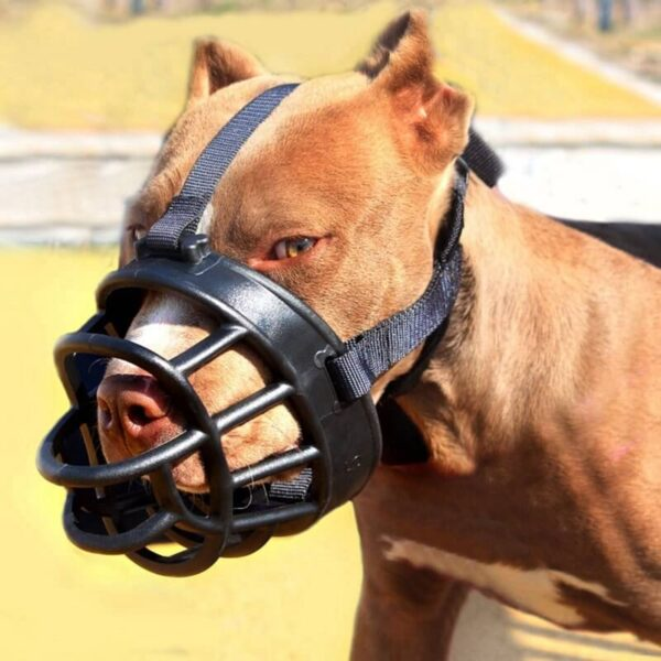 Buy Best Soft Silicone Basket Dog Muzzle on Petsasa Kenya Pet store