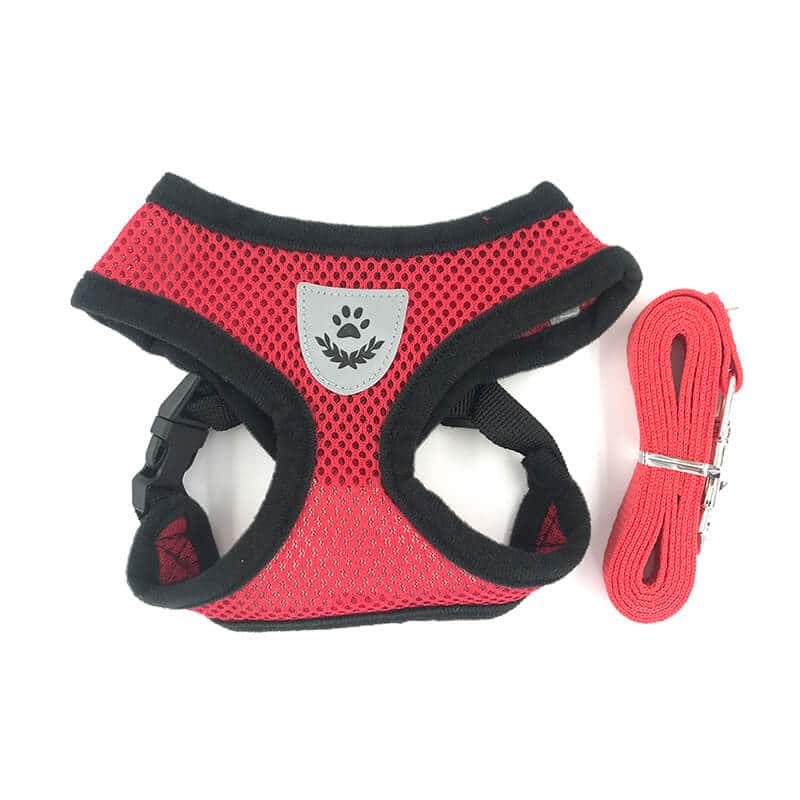 Buy Red Beautiful Dog Harness in Kenya for Small Dogs