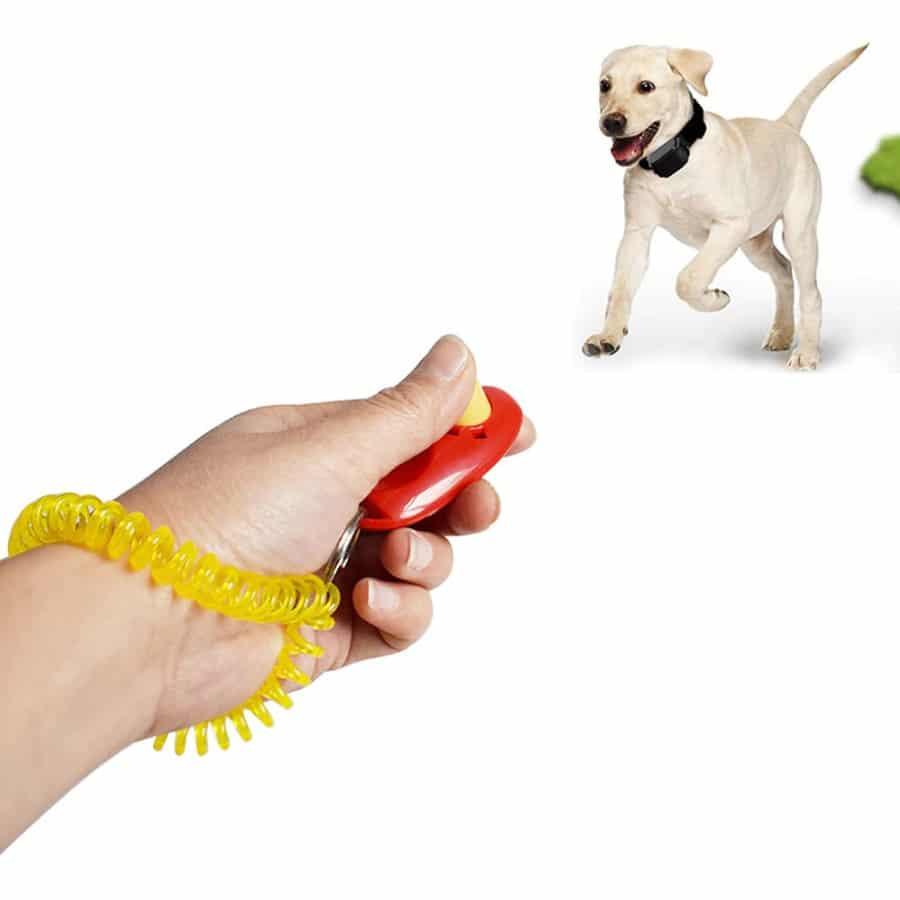 Buy Pet Simple Dog Training Clicker Training Tool Online in Kenya on Petsasa Pet Store in Nairobi
