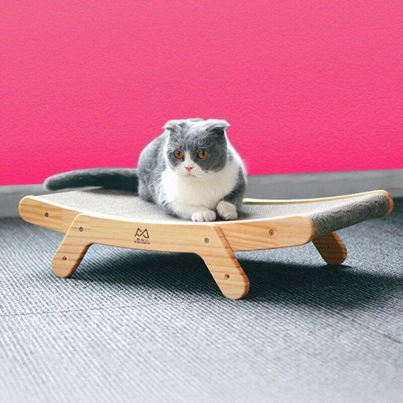 Buy Cat Lounge Bed in Kenya on Petsasa Petstore