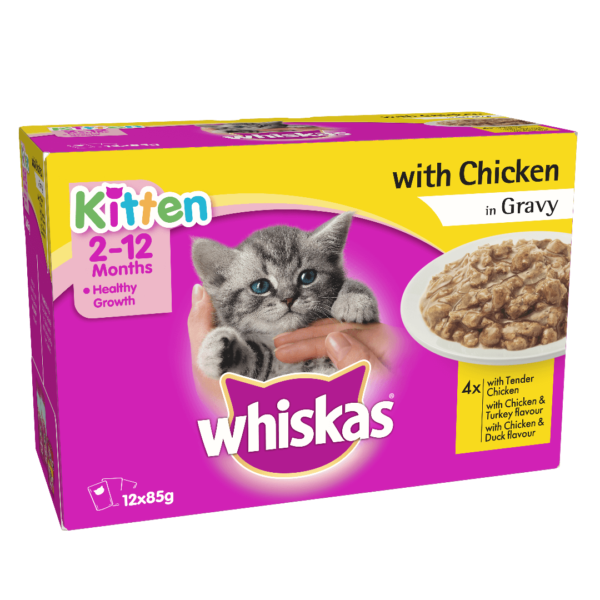 Buy Whiskas Kitten Wet Food, Tender chicken in Gravy, 12 Pouches in Kenya on Petsasa Pet store