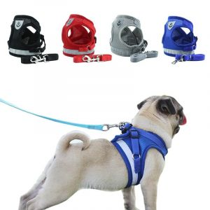 Buy Step-in Vest Dog Harness and Leash Set in Kenya for The Royal Pets