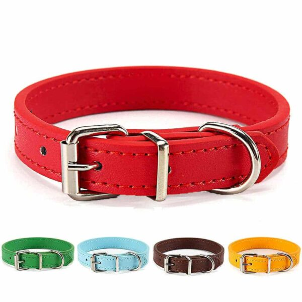 Buy Petstar PU Leather Dog Collar for Puppies & Small Dogs in Kenya