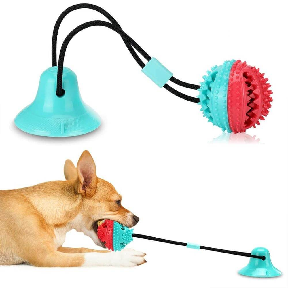 Best Interactive Suction Cup Tug Dog Toy with Treat Ball IN Kenya