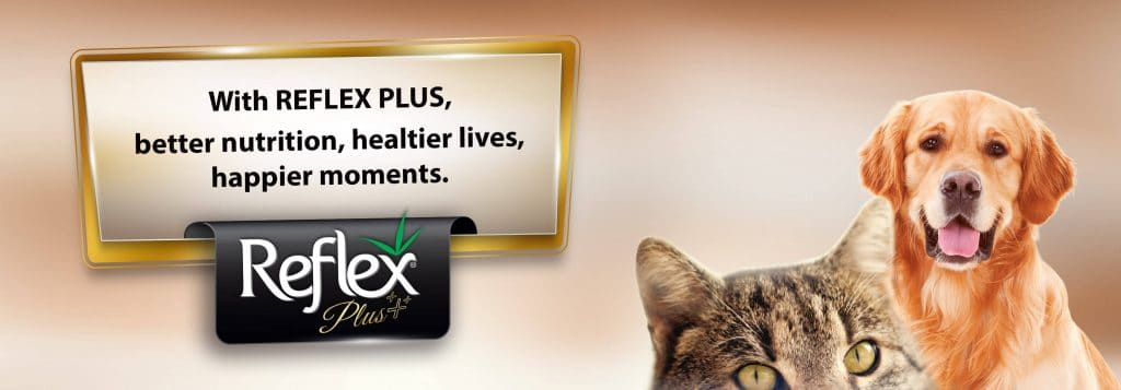 Buy Reflex Plus Pet Food for Dogs & Cats in Kenya