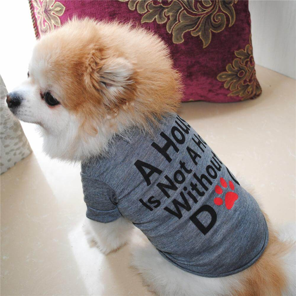 Buy Grey A House is Not Home Without A Dog Summer Dog T-Shirt in Kenya for Small, Medium and large dogs