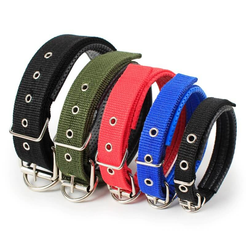 Heavy Duty Adjustable Dog Collar