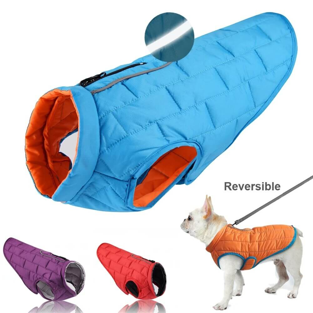 Buy Petsasa Padded Dog Jacket, Adjustable, With Leash Opening in Kenya Pet store online