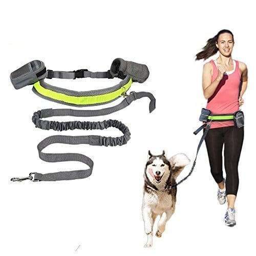 Buy Hands-Free Running Dog Leash, Elastic, Reflective in Kenya on Petsasa