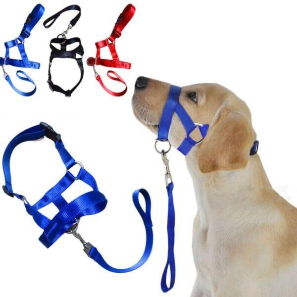 The Best Halti Style Dog Head Collar & Leash Gentle Halter Lead For Dog Training in Kenya