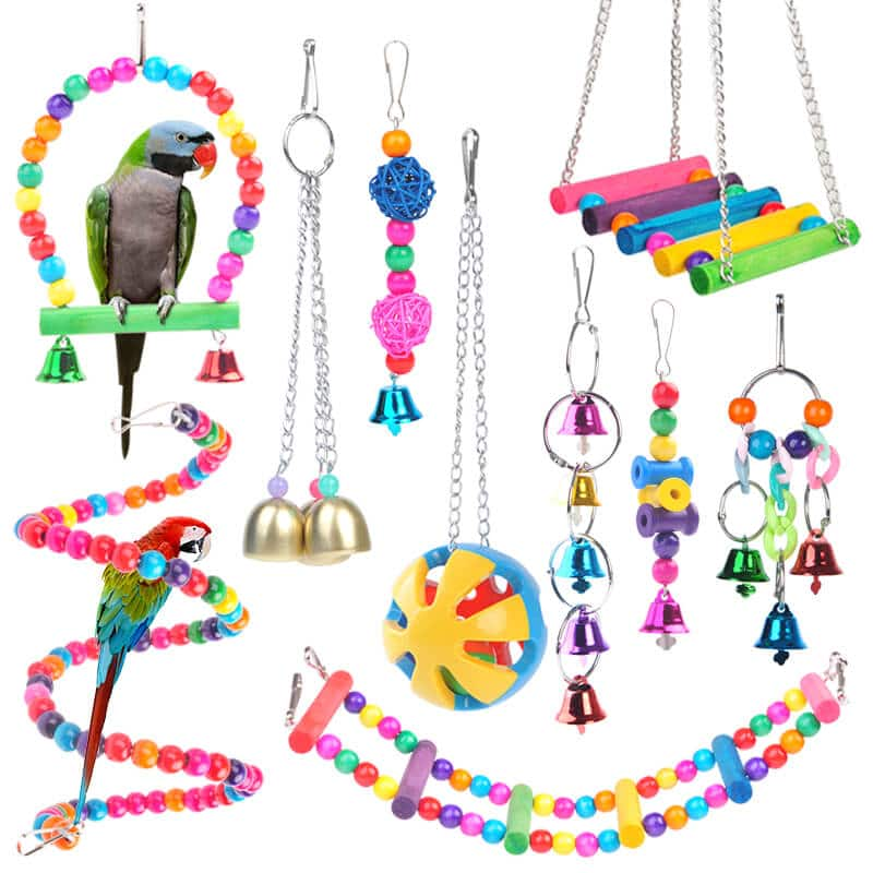 Buy Best Colourful Parrot Bird Perches, Swings and Toys Set in Kenya Petsasa Pet House