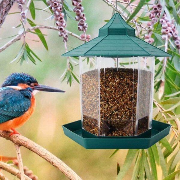 Beautiful Garden Panorama Hanging Bird Feeder in Pet Store Kenya Location