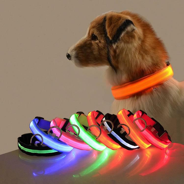 Karen Pet Store Glow In The Dark LED Dog Collar For Night Safety Kenya