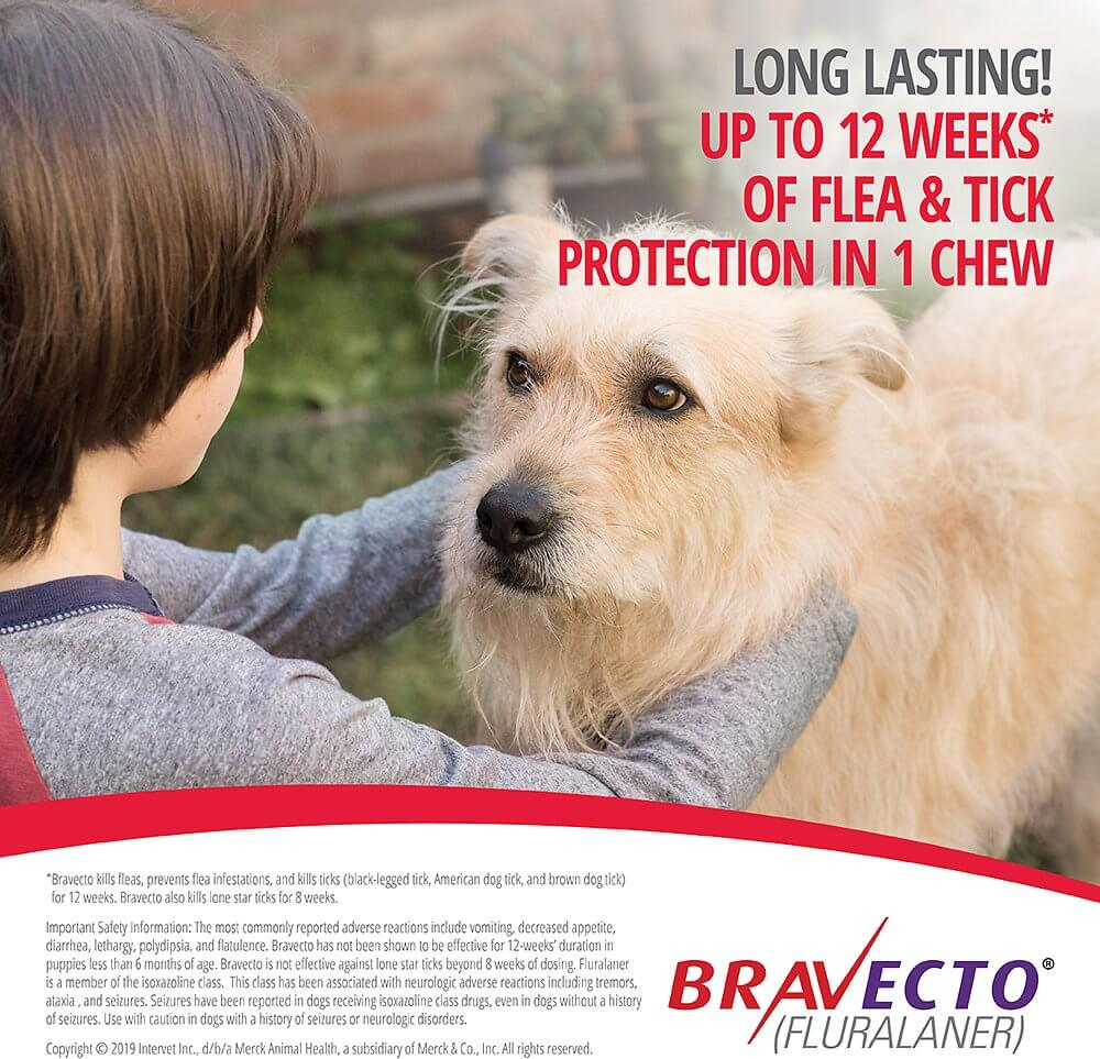 Long lasting flea and tick solution Bravecto for Small Dogs in Kenya