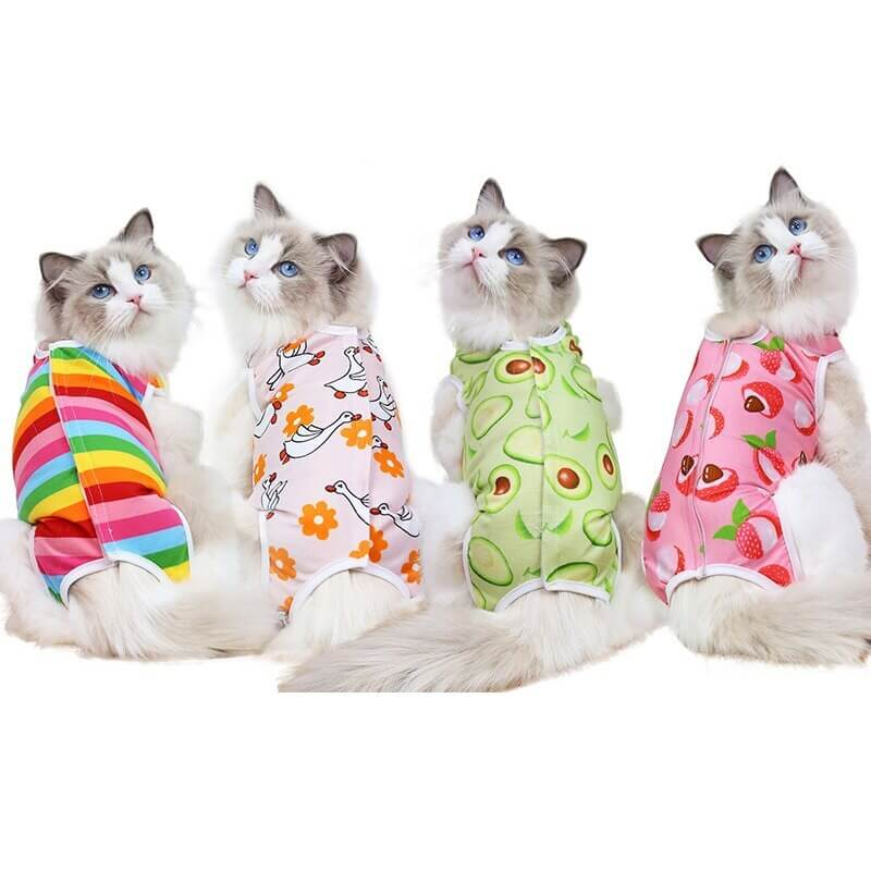 Buy Funky Small Dog & Cat Recovery Suit Clothe & Pajamas in Kenya