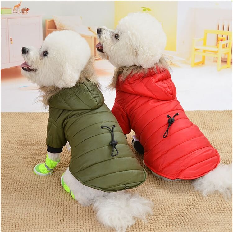 Clothes for Small Dogs Petsasa Cold Weather Furry Dog Jacket in Nairobi Kenya